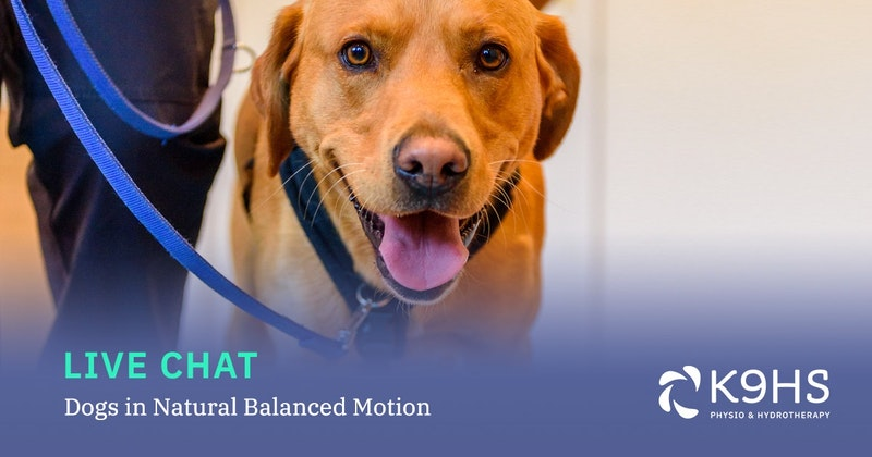 Dogs in Natural Balanced Motion - Crowdcast